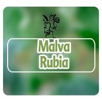 Malva Rubia, el ángel de tu salud, plantas medicinales para edemas, herbolaria para edemas, rodrigo mondragón,