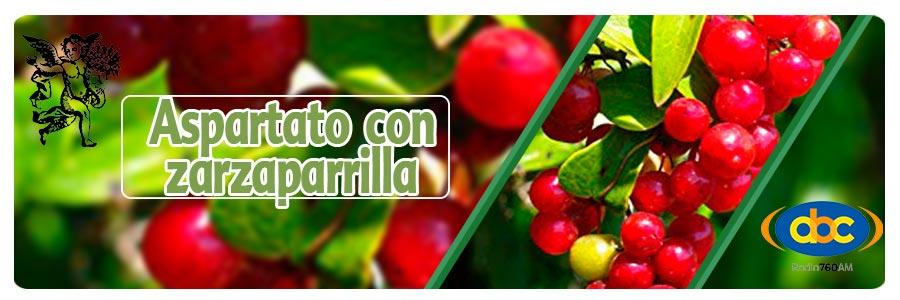 El ángel de tu salud, plantas medicinales para disminución de testosterona, Rodrigo Mondragón