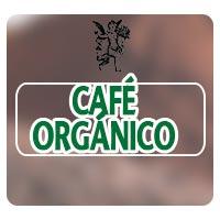 El Ángel de tu Salud, Plantas medicinales, Rodrigo Mondragón, Café orgánico