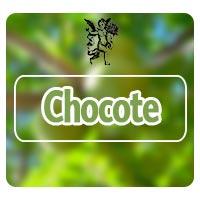 Planta medicinal chocote, programa de rodrigo mondragón, el ángel de tu salud