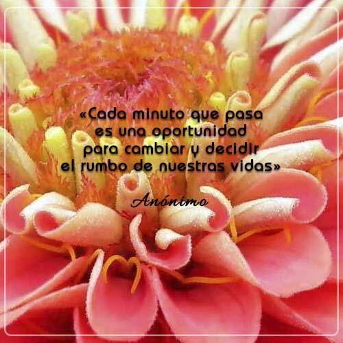 #FraseDelDía   «Cada minuto que pasa es una oportunidad para cambiar y decidir el rumbo de nuestras vidas» Anónimo