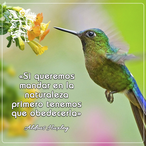 #FrasedelDía « Si queremos mandar en la naturaleza  primero hay que obedecerla » Aldous Huxley