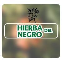 Hierba del negro, plantas medicinales, el ángel de tu salud, herbolaria, para que sirve la hierba del negro, plantas medicinales para foliculitis, rodrigo mondragón, qué es la foliculitis, propiedades de la hierba del negro, herbolaria tradicional,