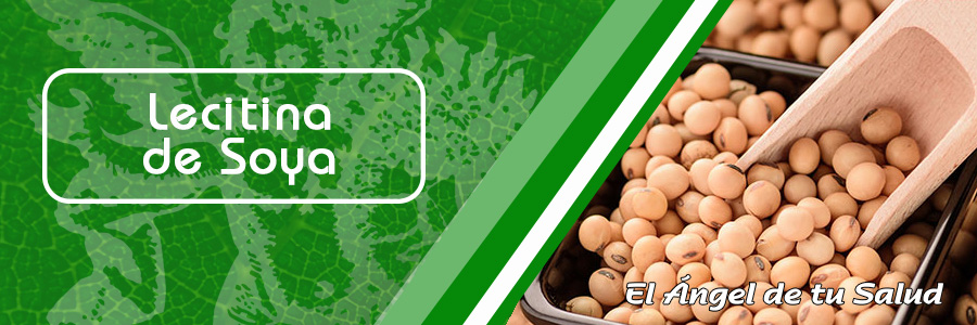 Las isoflavonas son un grupo de sustancias vegetales presentes en el grano de la soya, una legumbre consumida tradicionalmente en China, Japón y otros países orientales