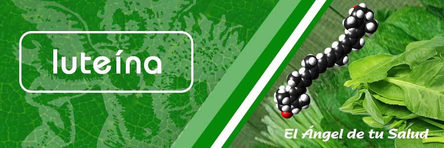 La luteína es un antioxidante producido por las plantas que pertenece a la familia de los carotenoides.