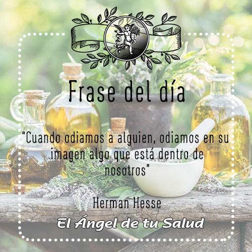 """""""Cuando odiamos a alguien, odiamos en su imagen algo que está dentro de nosotros"""" -Herman Hesse"""