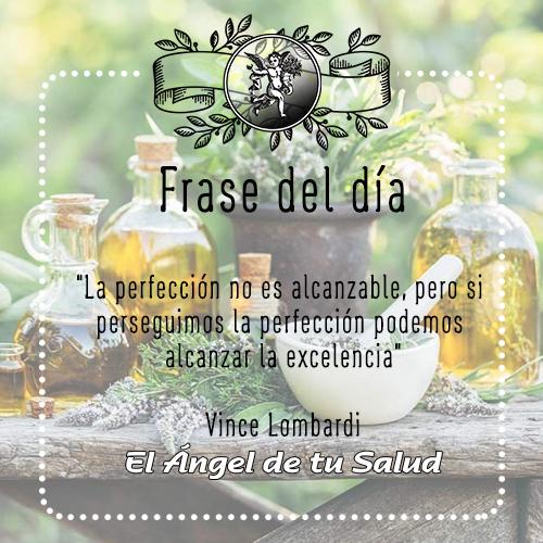 """""""La perfección no es alcanzable, pero si perseguimos  la perfección podemos alcanzar la excelencia"""" Vince Lombardi"""