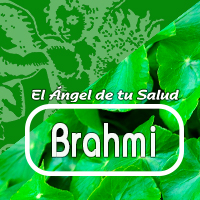 Brahmi induce un sentido calma y paz en las personas que lo ingieren con regularidad. Es único en su habilidad para vigorizar los procesos mentales mientras que reduce los efectos de la tensión y la ansiedad nerviosa.