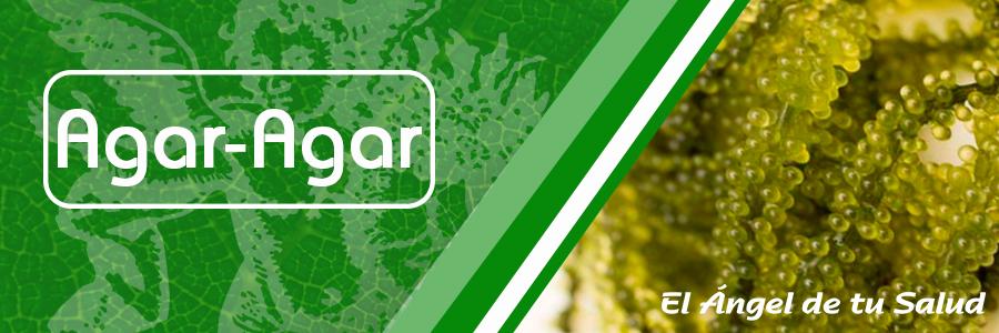 El agar-agar posee numerosas propiedades digestivas, que ayudan a eliminar residuos del estómago y del intestino, regulan el estreñimiento y disminuye el colesterol y los triglicéridos gracias a su propiedad depurativa.