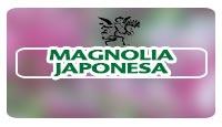 Logo el ángel de tu salud, programa de radio sobre magnolia japonesa y neurosis, cómo tratar la neurosis de manera natural