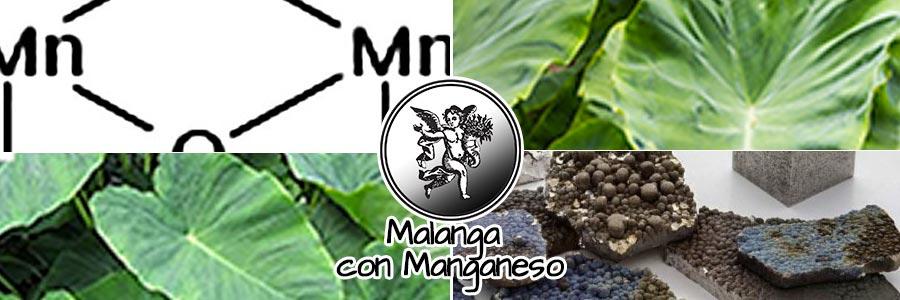 Malanga con magnesio, programa de radio malanga con magnesio