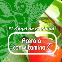 En humanos, la vitamina C es un potente antioxidante, actuando para disminuir el estrés oxidante.
