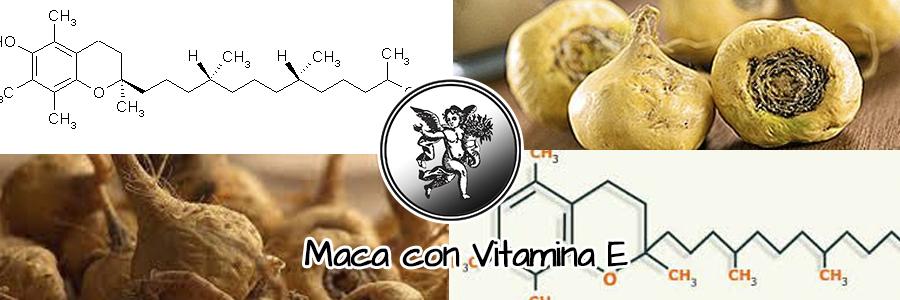 Si bien es cierto las investigaciones revisadas aseguran que la maca es un buen antioxidante.