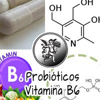 Los principales beneficios de los probióticos son:  Combatir y prevenir enfermedades intestinales como colitis, síndrome del intestino irritable, enfermedad de Crohn e inflamación intestinal