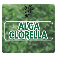 el ángel de tu salud, programa de radio, alga clorella para úlceras pépticas