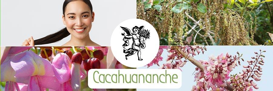 El ángel de tu salud, programa de radio, cacahuananche