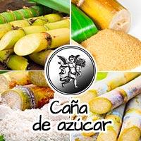 EL ÁNGEL DE TU Salud, plantas medicinales, caña de azucar, aburia, que es la anuria.