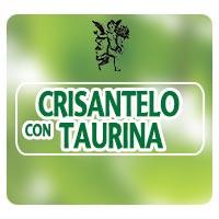 Crisantelo con taurina, colesterol y triglicéridos, el ángel de tu salud, Rodrigo Mondragón, dislipemia