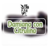Damiana de california con citrulina, el ángel de tu salud, rodrigo mondragón, programa de radio