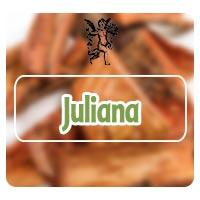 juliana, el ángel de tu salud, plantas medicinales, rodrigo mondragón, programa de radio