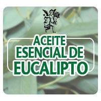 Programa el ángel de tu salud, Rodrigo Mondragón, aceite de eucalipto para vías respiratorias, escuchanos
